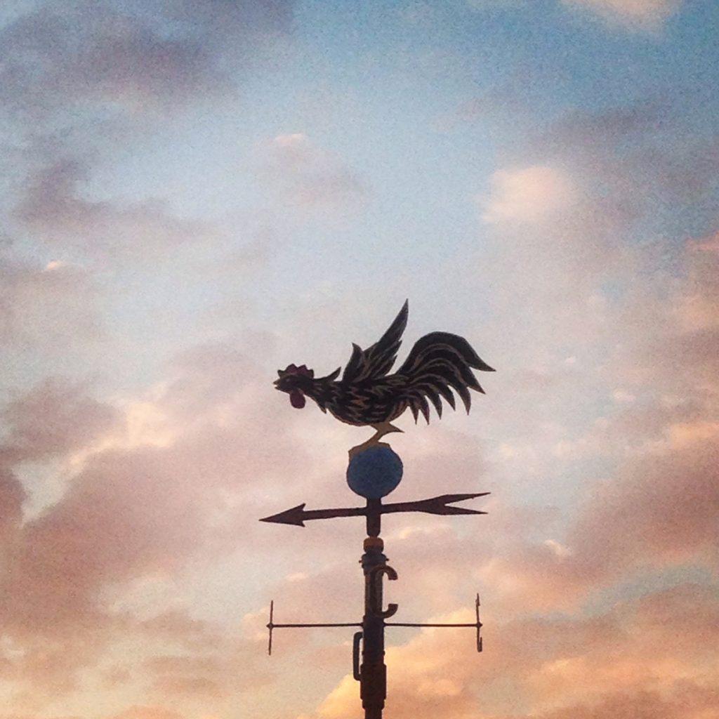 girouette-coq