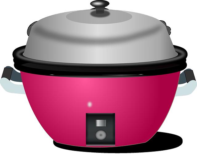Les critères de choix d'un cuiseur à riz